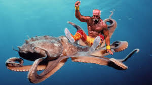 octopus wrestling a sport that amounted to cephalopod home invasion