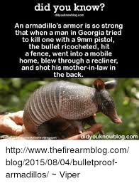 Armadillo Meme - did you know didyouknowblogcom an armadillo s armor is so strong