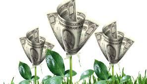money flowers april showers bring money flowers michael glenn pulse linkedin