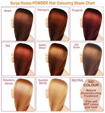 raw hair dye color chart henna powder hair colour surya brasil sustainable beauty