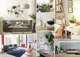 Decorative Plants For Home Living Room Natural Walls With Green Living Plants Transitional