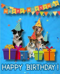 free ecards for birthdays send this adorable pug card for free to someone special for their
