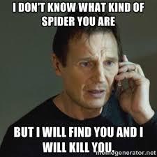 I Saw A Spider Meme - spider meme reneedezvous
