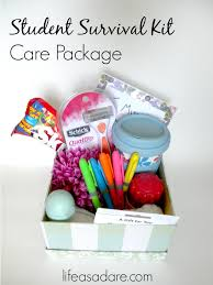 college care packages 13 college care package item ideas as a