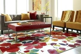 Home Goods Area Rugs Home Rugs Ntq Me