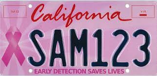 san diego state alumni license plate frame california special interest license plates