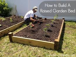 Vegetable Beds Making Raised Vegetable Garden Beds Best Idea Garden
