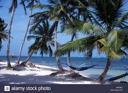 hotel beach san pedro ambergris caye belize caribbean stock photo