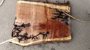 burn on wood high voltage wood burning 2