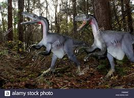 hunting pack of troodon dinosaurs cretaceous era lifelike full