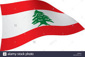Lebanon Flag Tree Lebanese Flag Stock Photos U0026 Lebanese Flag Stock Images Alamy