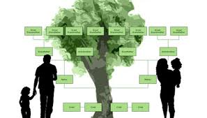 educational purpose of a family tree synonym