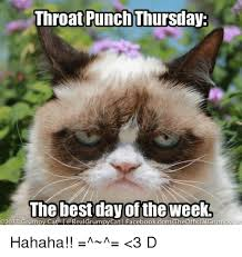 Best Day Meme - throat punch thursday the best day of the week 02013 grumpy cat i