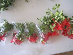 where to buy mistletoe buy mistletoe fresh harvested mistletoe