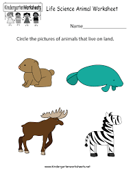 life science animal worksheet free kindergarten learning