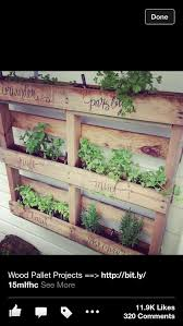 27 best balcony wall herb garden images on pinterest plants