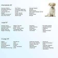 belgian sheepdog nc amazon com paney heavy duty 48
