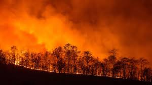 Wildfire Episodes Guide by Officials Woman Driving On Rim Sparks California Wildfires