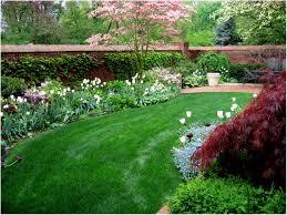 backyards charming low maintenance backyard landscaping backyard