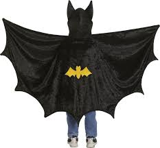 Halloween Batman Costumes 173 Halloween Costumes Boys Images