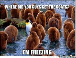 It S So Cold Meme - it s so cold that page 6 the stephenking com