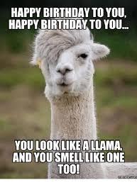 Alpaca Memes - 25 best memes about happy alpaca happy alpaca memes