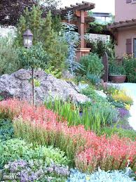 Backyard Xeriscape Ideas Xeriscape Ideas For Front Yard Marvelous Front Yards Gardens Front