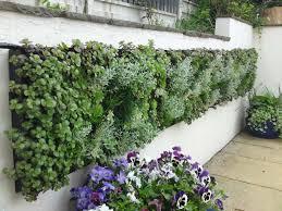 fall how to do a vertical garden a vertical garden made from diy