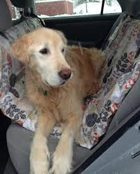 learn how to make a diy pet car hammock how tos diy
