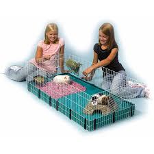 Hamster Cages Petsmart Midwest Guinea Habitat Guinea Pig Cage 47