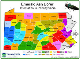 emerald ash borer map eab map and update