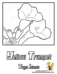 flower page printable coloring sheets flower printables states