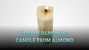 edible candle vela comestible wick edible candle