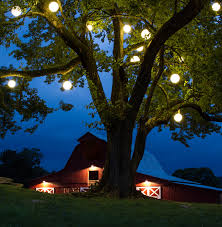 festive ideas outdoor lighting perspectives of northern new jersey