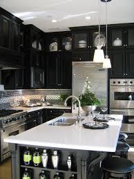 white and black kitchen ideas 53 stylish black kitchen designs decoholic