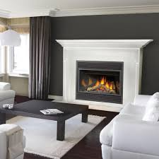 Best Direct Vent Gas Fireplace by Formalbeauteous White Fireplace Mantel Design And Alluring Black
