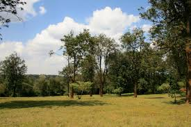 vacant land plots for sale peponi u0026 co
