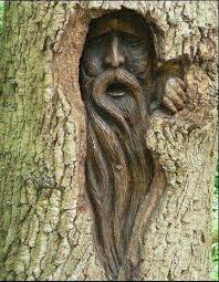 amazing things in the world awesome wood paintings