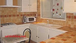 plan de travail cuisine lapeyre renovation cuisine carrelage pour idees de deco de cuisine nouveau