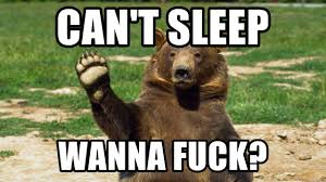 Wanna Fuck Meme - can t sleep wanna fuck bear waving bye meme generator