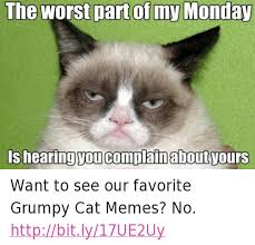 Good Grumpy Cat Meme - 25 best memes about grumpy cat meme grumpy cat memes