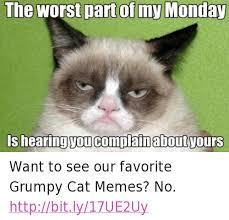 No Grumpy Cat Meme - 25 best memes about grumpy cat meme grumpy cat memes