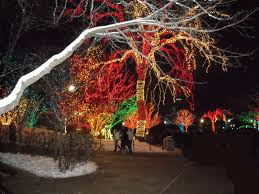 Zoo Lights by Lincoln Park Zoo Lights Chuckthornton Com