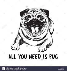 pug vector vectors stock photos u0026 pug vector vectors stock images