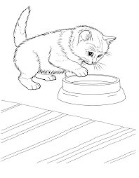 coloring kitten coloring sheets