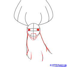 how to draw a deer better life