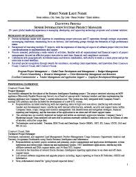 program manager resume senior project manager resume template premium resume sles