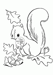 autumn squirrel coloring page printable pages click the for