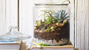 Tabletop Rock Garden Cookie Jar Tabletop Garden
