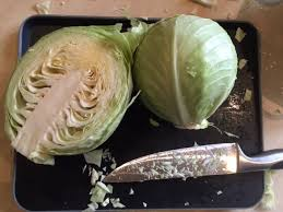 comment cuisiner un chou blanc le chou blanc légume pour récolte d hiver jardin potager bio